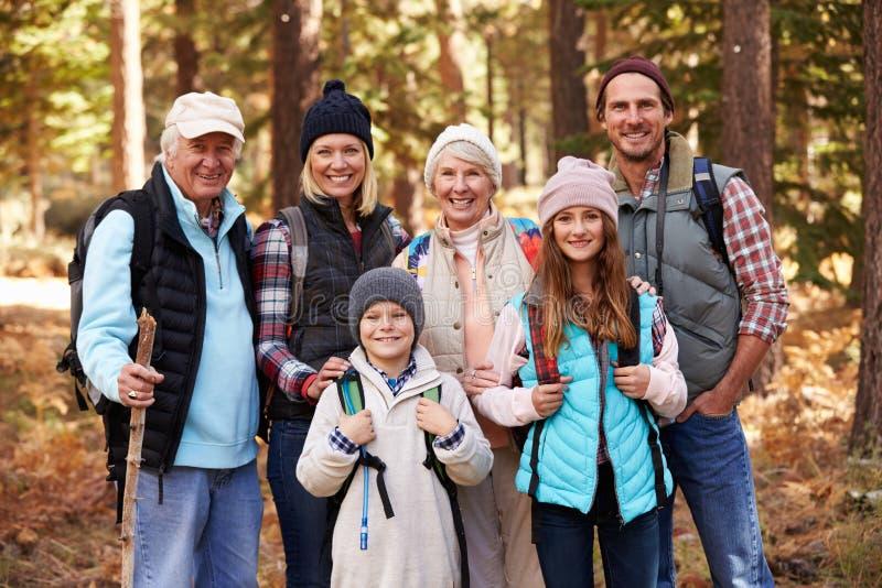 Mång- utvecklingsfamilj på vandring i skogen, gruppstående royaltyfri bild