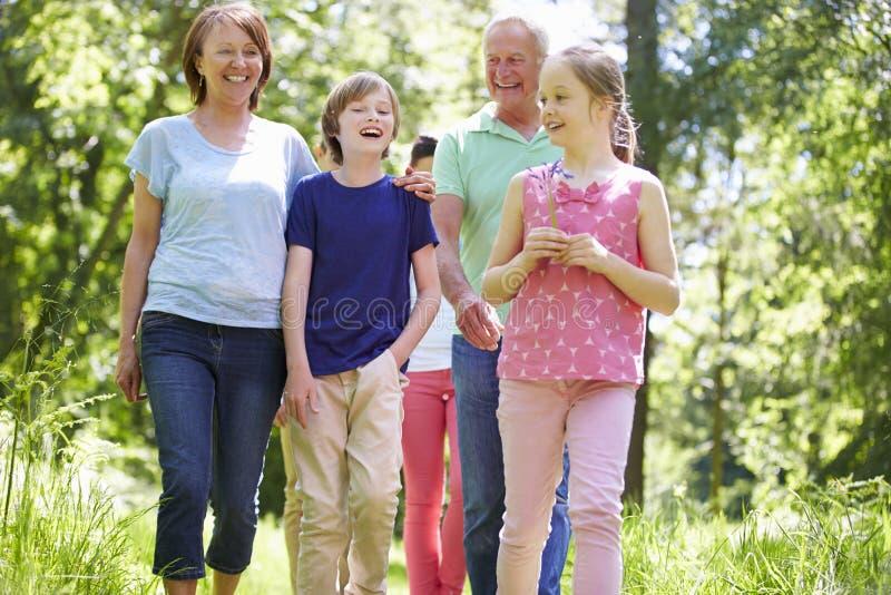 Mång- utvecklingsfamilj som går till och med sommarbygd royaltyfri bild