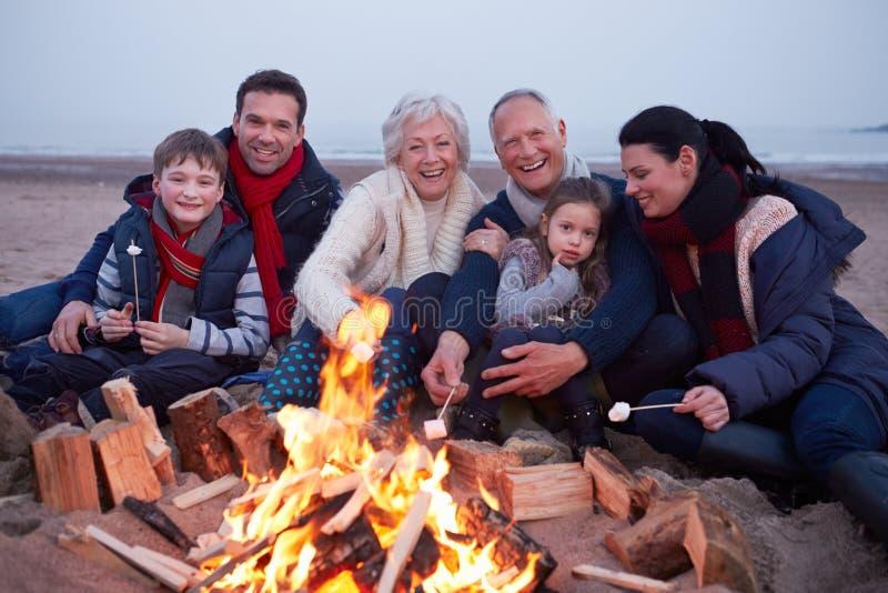 Mång- utvecklingsfamilj som har grillfesten på vinterstranden royaltyfri fotografi