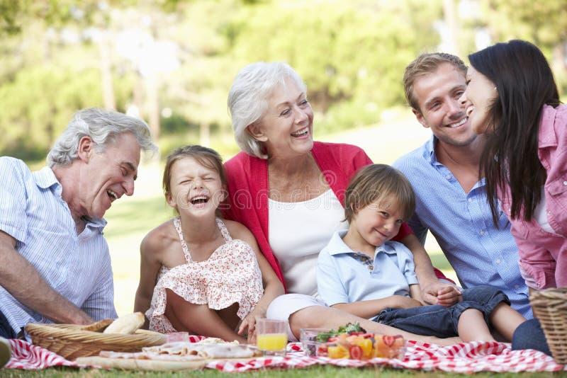 Mång- utvecklingsfamilj som tillsammans tycker om picknicken arkivbild
