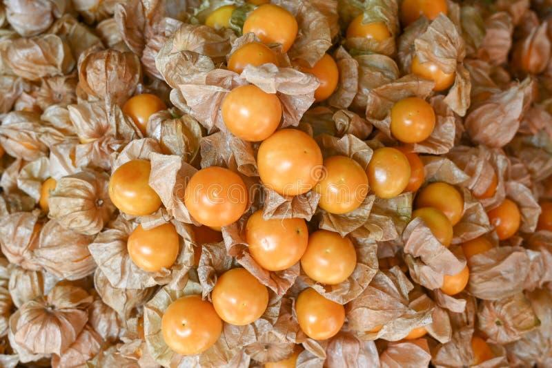 Många apelsinkrusbär med brunt skal arkivbild