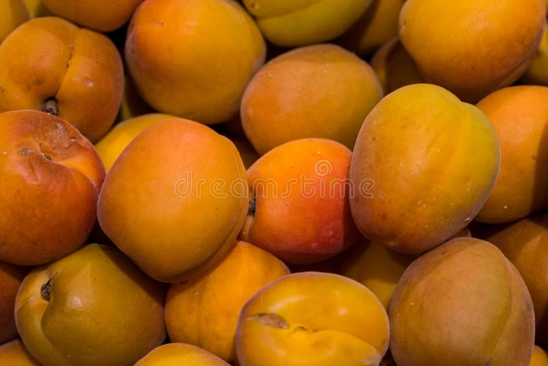 M?nga aprikors sprids p? tabellen, mogen aprikos royaltyfri foto