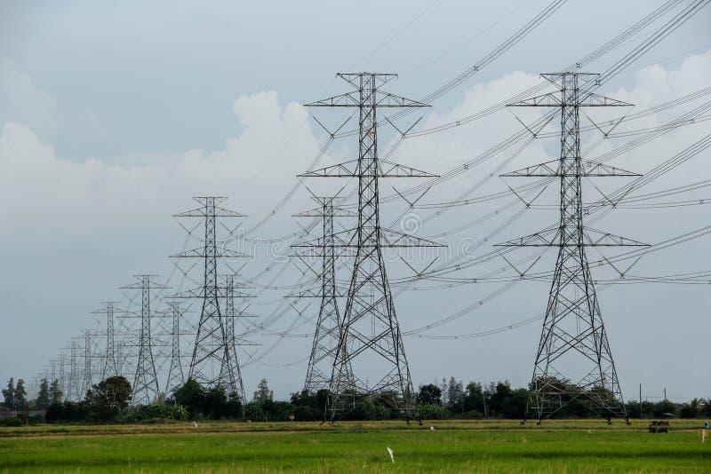 Många av polen för höjdspänningselektricitet står i en lång rad på de gröna risfälten royaltyfri fotografi