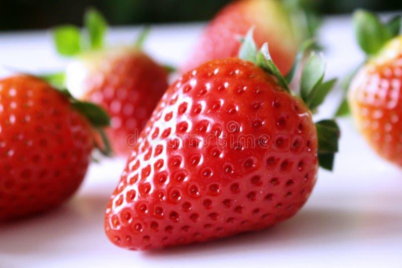 många bakgrundsklimpmat meat mycket Closeup på nytt organiska röda mogna jordgubbar som ligger på en vit bakgrund Mogna bär för s royaltyfri fotografi