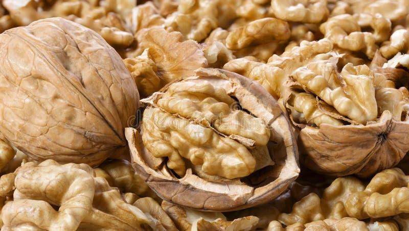Många besköt valnötter och i-SHELL makro arkivfoton