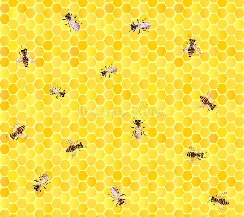 Många bin på honungskakan, seamless bakgrund. royaltyfri illustrationer