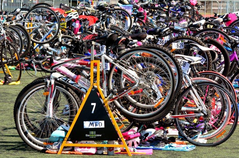 Många cyklar under en triathlonkonkurrens royaltyfri fotografi