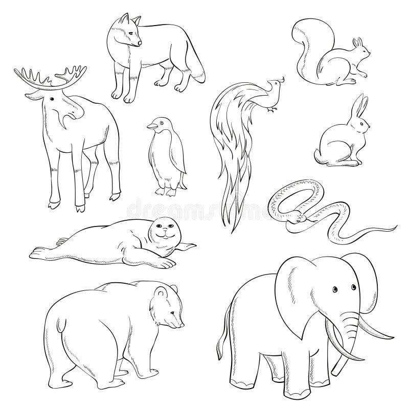 Många djur royaltyfri illustrationer