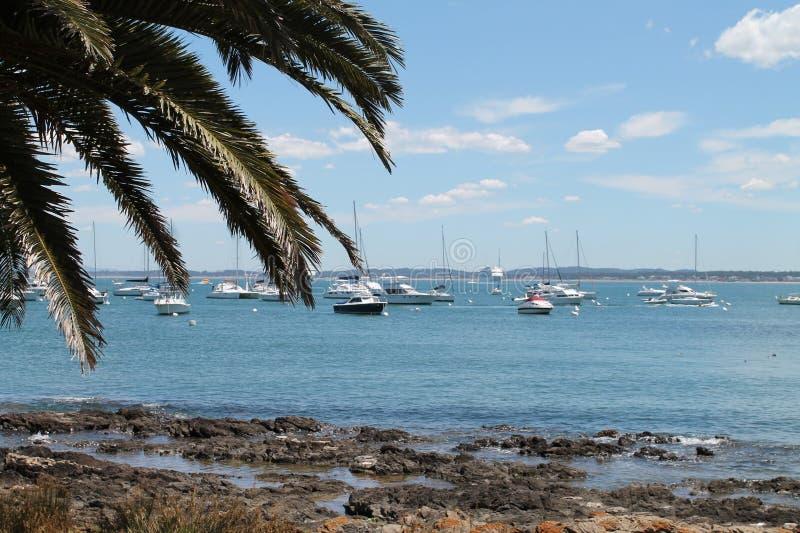 Många fartyg i Punta Del Este, Uruguay arkivbild