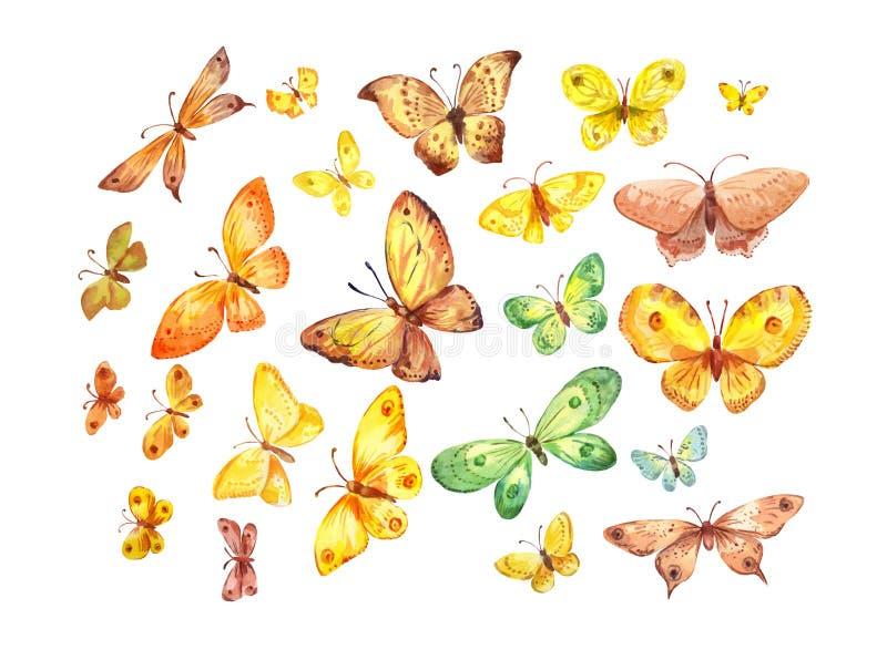 Många fjärilar på vit bakgrund för flygillustration för näbb dekorativ bild dess paper stycksvalavattenfärg stock illustrationer