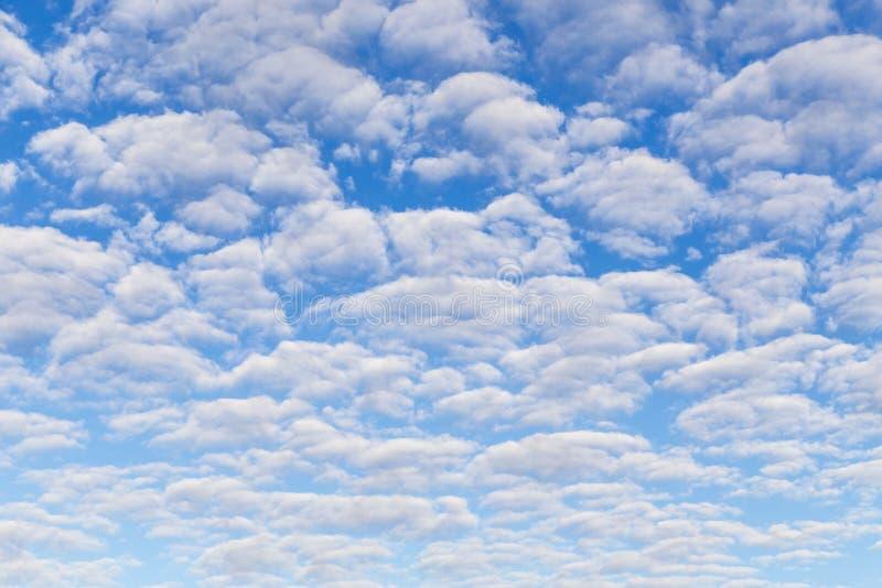 Många fluffiga härliga vita moln mot blå himmel arkivbild