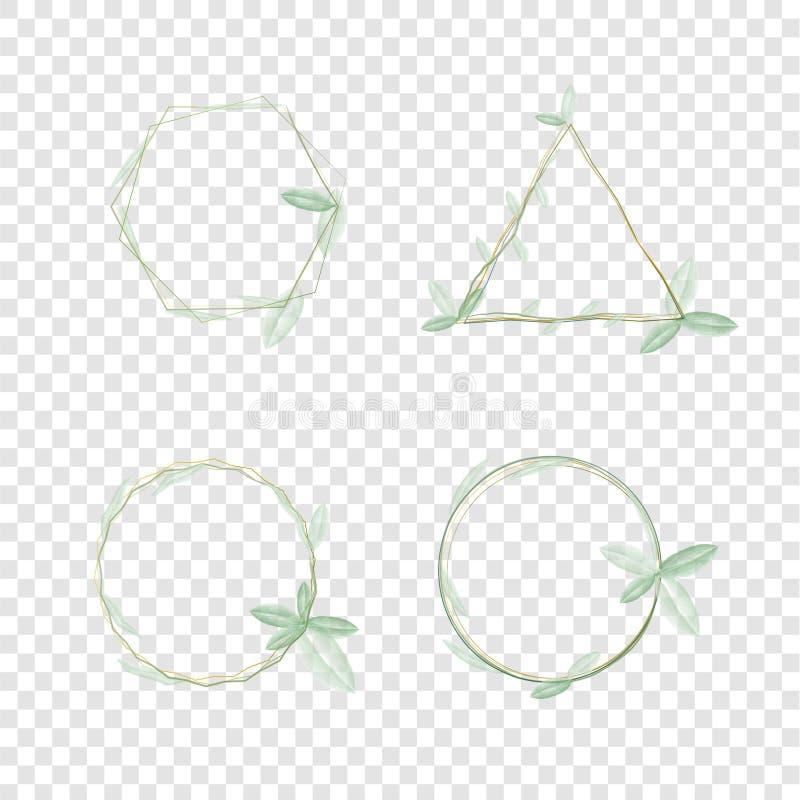 Många form av vattenfärgen som klättrar växtramen med ljust - vektor för grön färg, fyrkantig härlig triangelcirkelform som är ly stock illustrationer