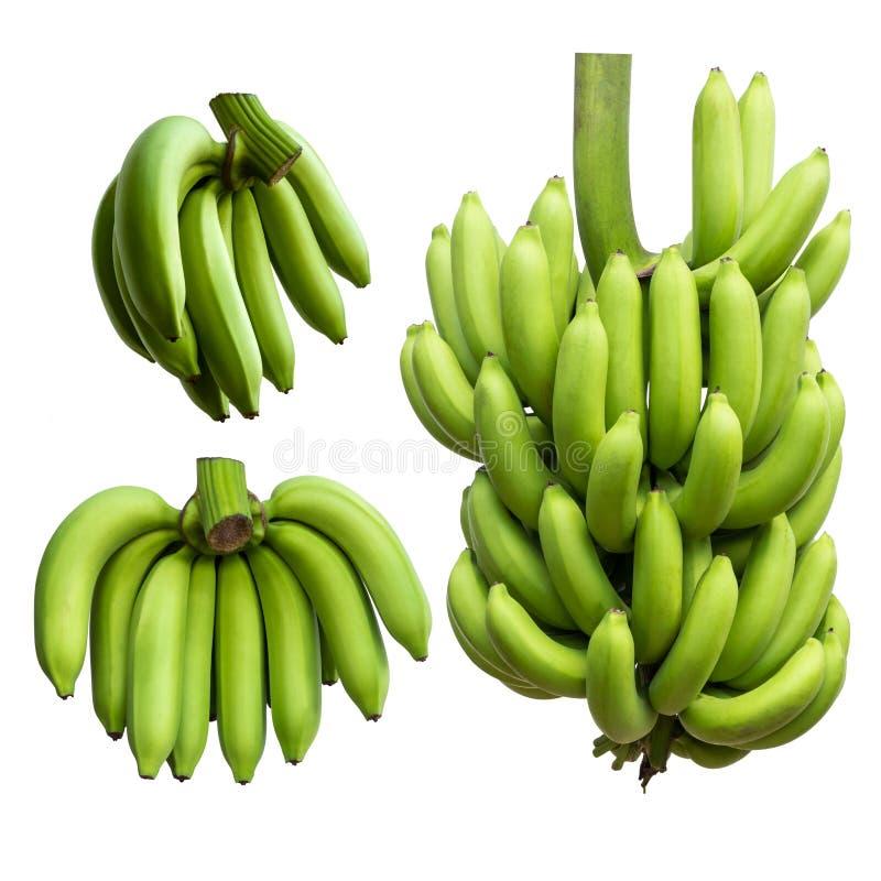Många gör grön bananer arkivbild