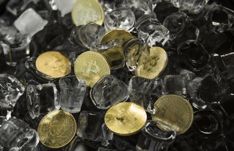 Många guld- bitcoinmynt på isbakgrund frysning Blockchain bryta Digital pengar och faktiskt cryptocurrencybegrepp royaltyfri bild