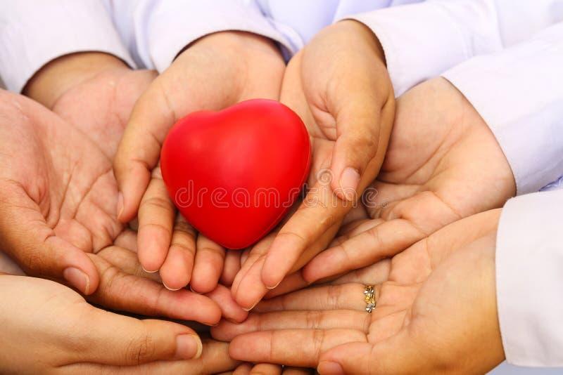 Många händer och en röd hjärta arkivfoton