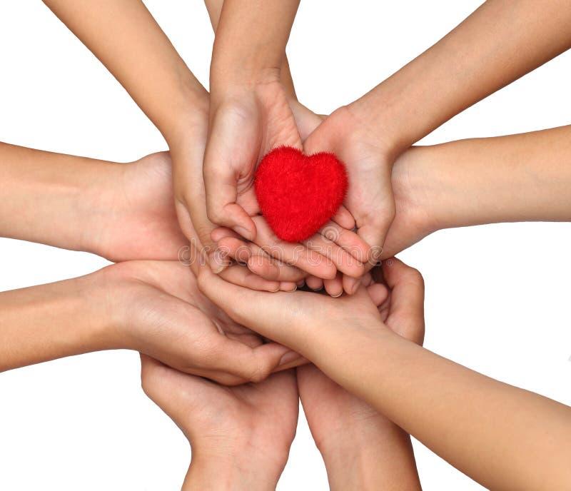 Många händer som rymmer en röd hjärta bakgrund älskling, omsorg, chari royaltyfri foto