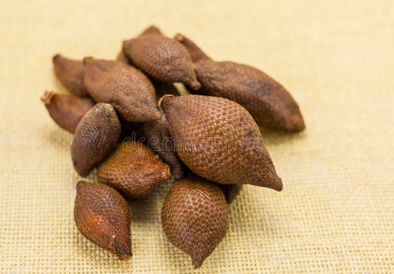 Många läckra frukter av ormen i högen för textilgulingbakgrund av brun frukt Asiana arkivbild