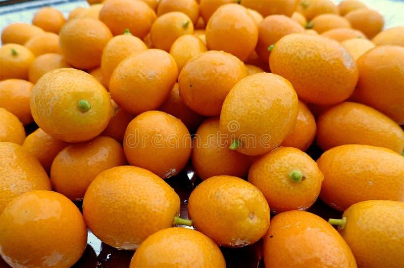 Många mogen orange frukt av den citrusa fortunellaen i en hög på en platta eller ett magasin royaltyfria bilder