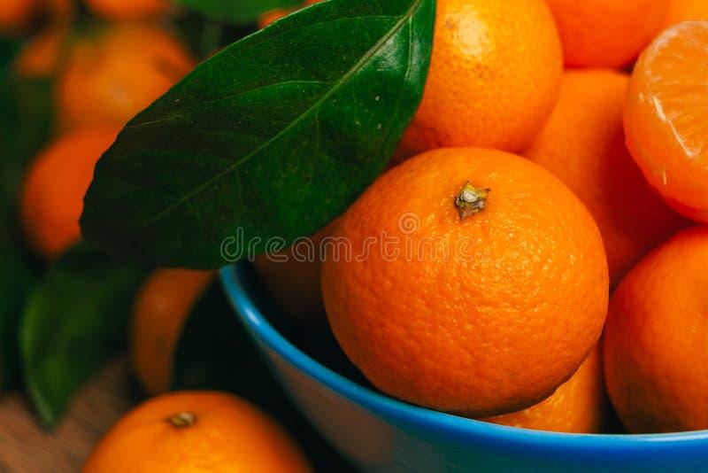 Många nya mandariner i en blå bunkenärbild royaltyfria bilder