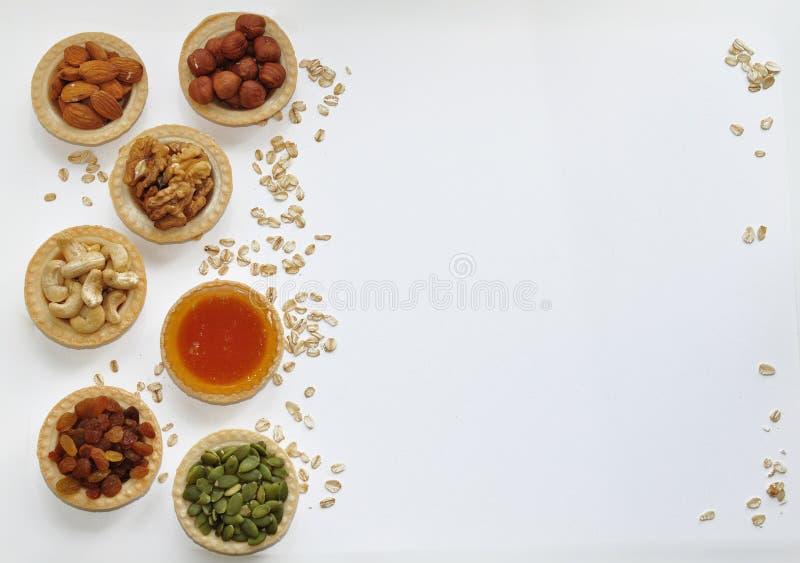 Många olika muttrar hällde in i tartlets med honung royaltyfria bilder