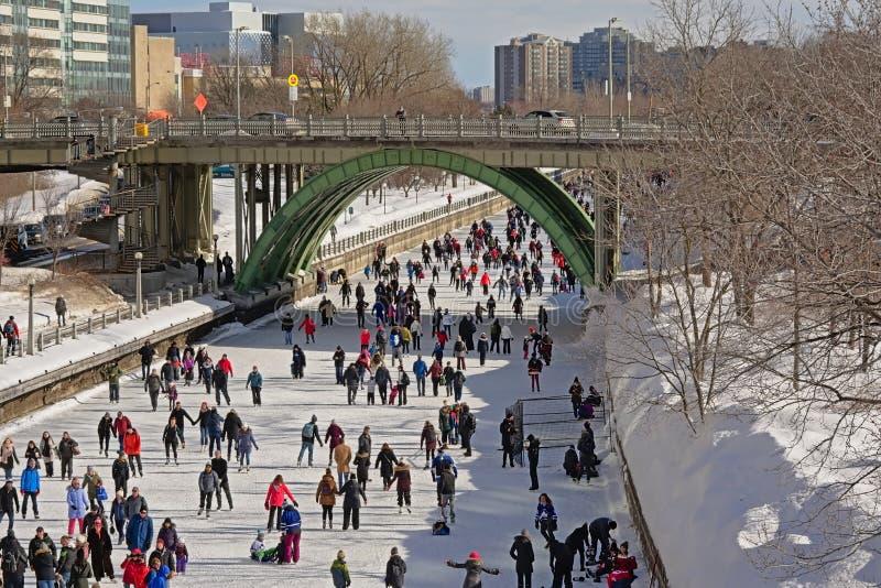 Många peepleskridskoåkning på rideaukanalen som är skateway under winterludefestivalen i Ottawa fotografering för bildbyråer