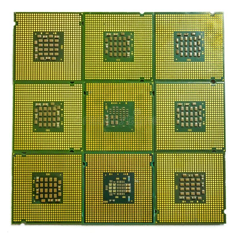 Många processorer med en mångfald av kontakter royaltyfri fotografi