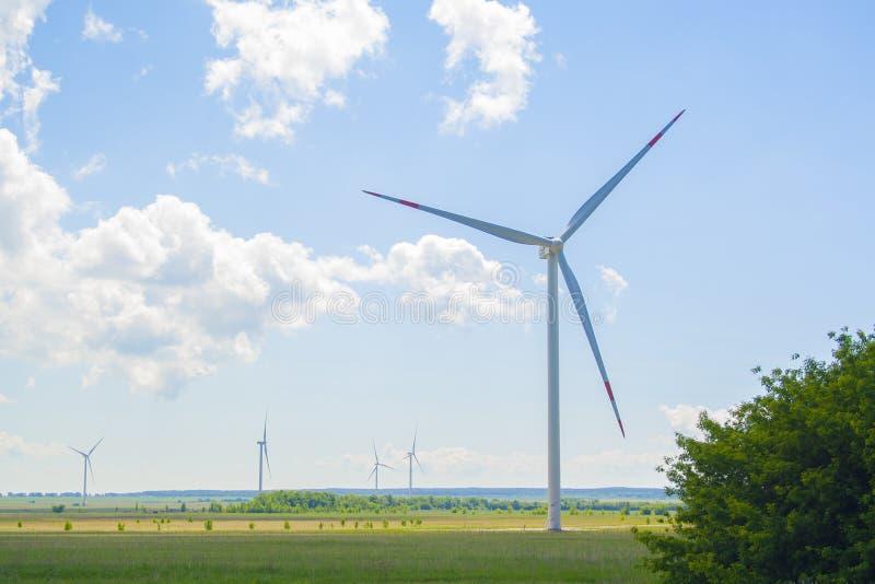 Många stora och höga väderkvarnar på den soliga dagen på det gröna fältet Generatorer för alternativ energi Windmills p? soluppg? royaltyfria foton