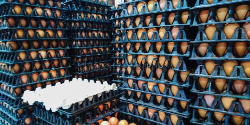 Många svarta plast- äggpaneler som är staplat upp högt i lager arkivfoto