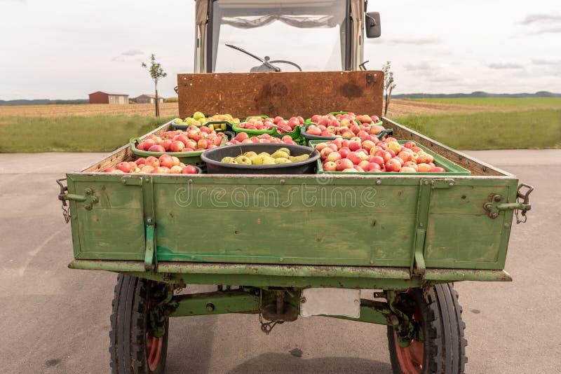 Många transporteras Apple och päron på en främre laddare, når du har skördat i höst Lagring i askar arkivfoto