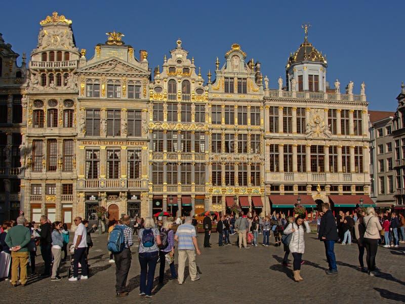 Många turister framme av medeltida skråhus i Bryssel Gran ställefyrkant royaltyfri bild