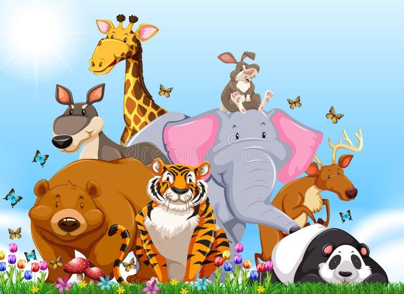 Många typer av vilda djur i fältet stock illustrationer