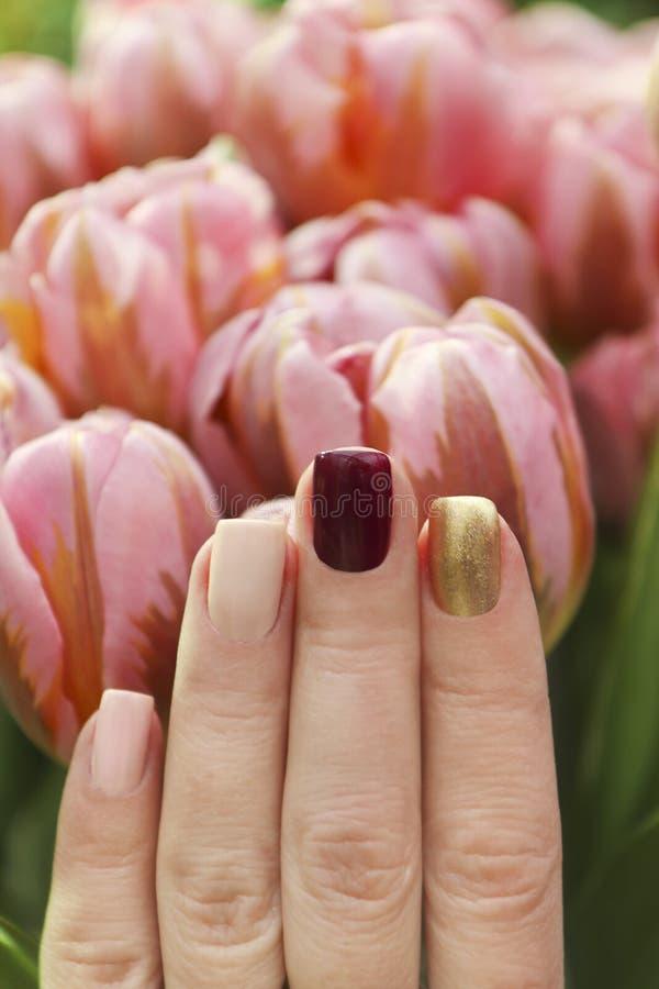Mångfärgad kort manikyr med en briljanta guld- mörka burgundy och pastellfärgat ljus spikar polermedel royaltyfria bilder