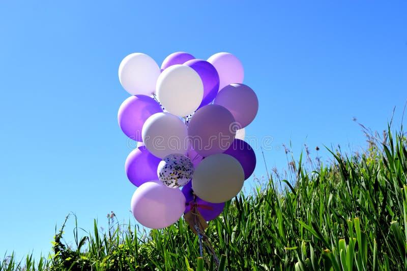 mångfärgade festliga ballonger på grönt gräs mot en blå himmel royaltyfri fotografi