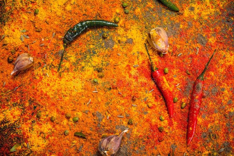 Mångfärgade kryddor med vitlök och peppar fotografering för bildbyråer