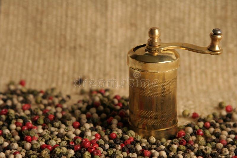 mångfärgade peppercorns arkivbild