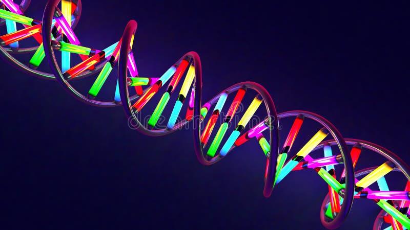 Mångfärgat neon ljus-som den vridna DNAtråden som göras av exponeringsglas och metall vektor illustrationer