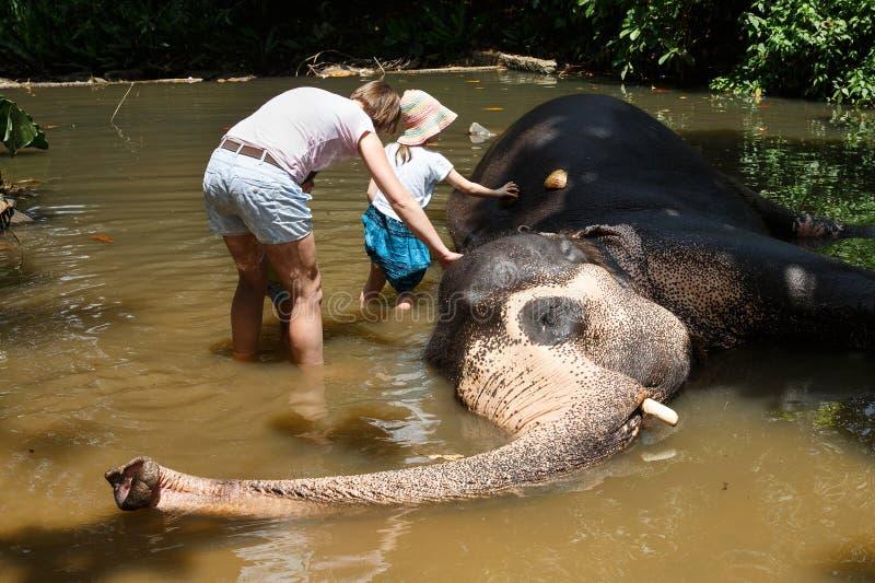 Mère avec des enfants caressant l'éléphant asiatique en captivité, enchaîné, maltraitée pour attirer des touristes images libres de droits