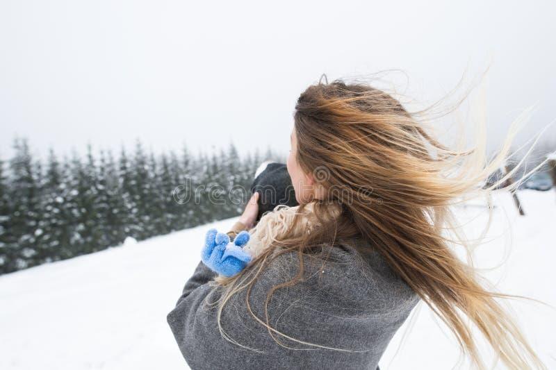 Mère ayant l'amusement avec son fils Nature de l'hiver image libre de droits