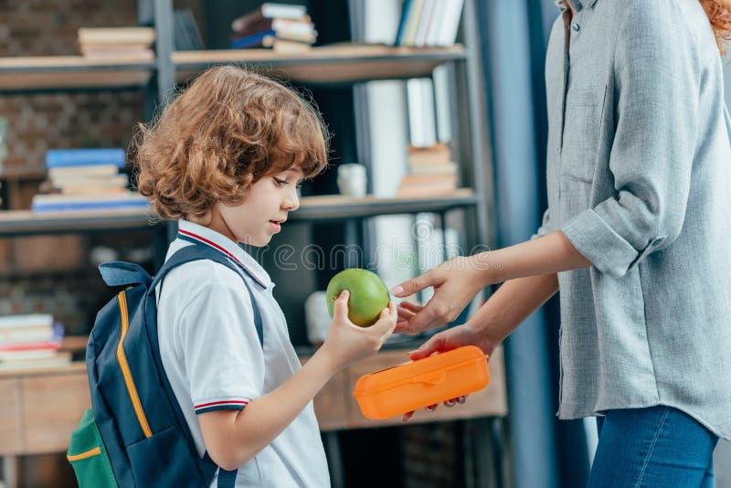 mère donnant le repas scolaire à son petit photo stock