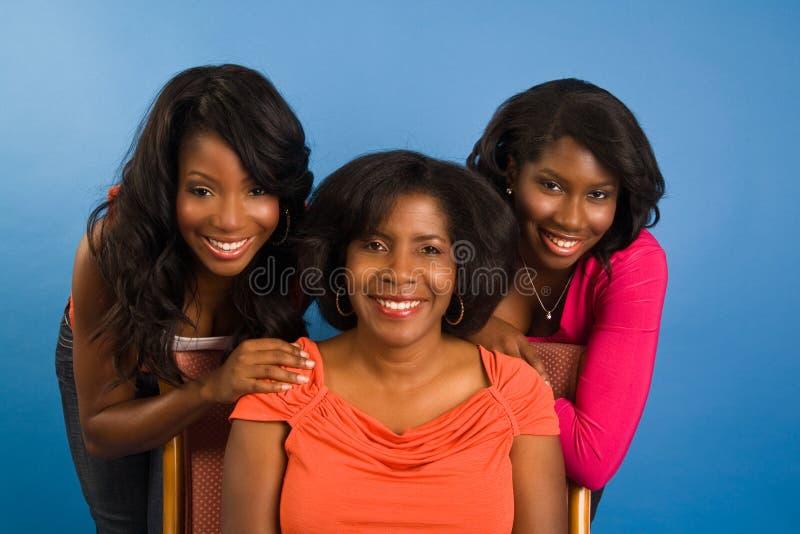 Mère et descendants images stock