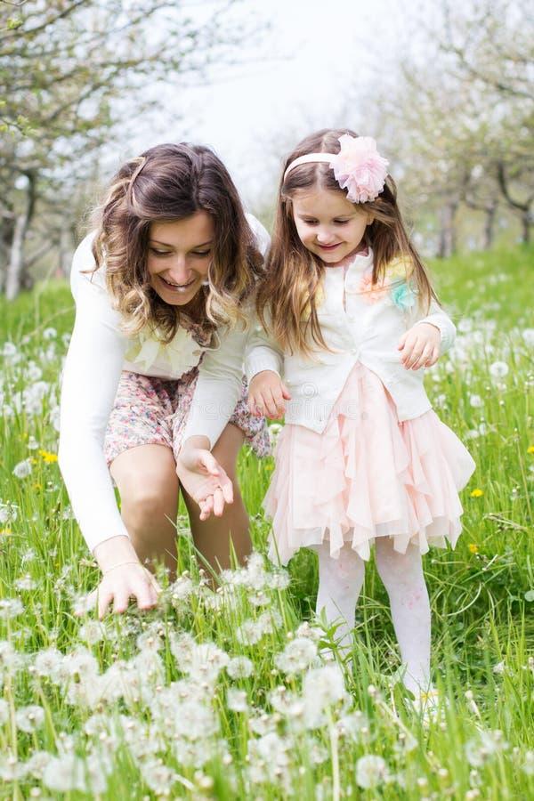 Mère et fille dans le domaine avec des pissenlits images libres de droits