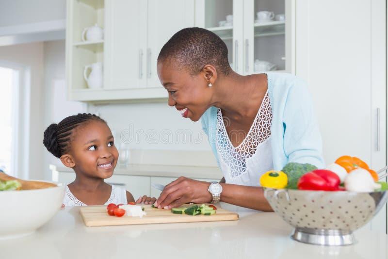 Download Mère Et Fille Faisant Une Salade Ensemble Photo stock - Image du heureux, mâle: 56484722