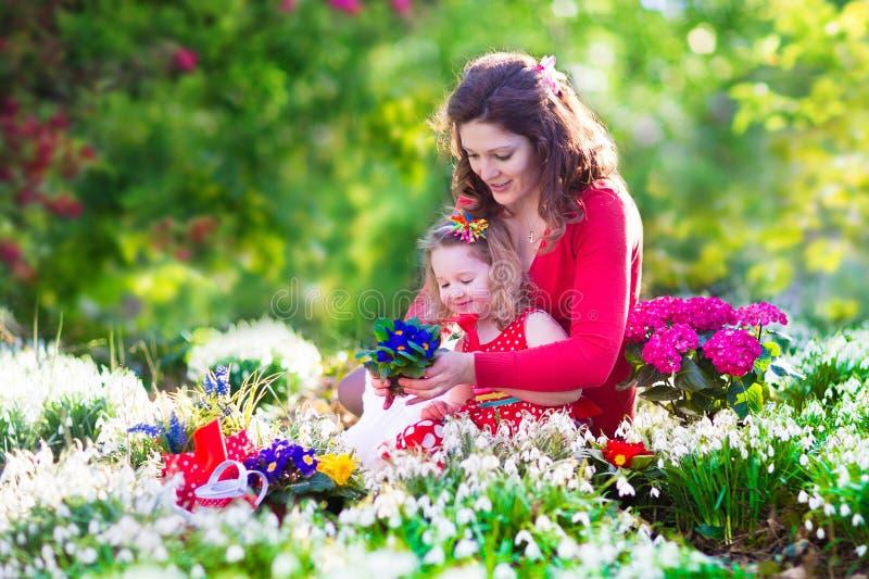 Mère et fille plantant des fleurs image libre de droits