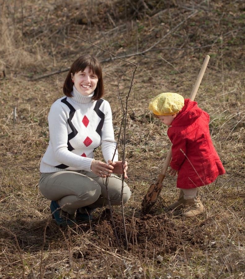 Mère et fille plantant l'arbre photographie stock libre de droits