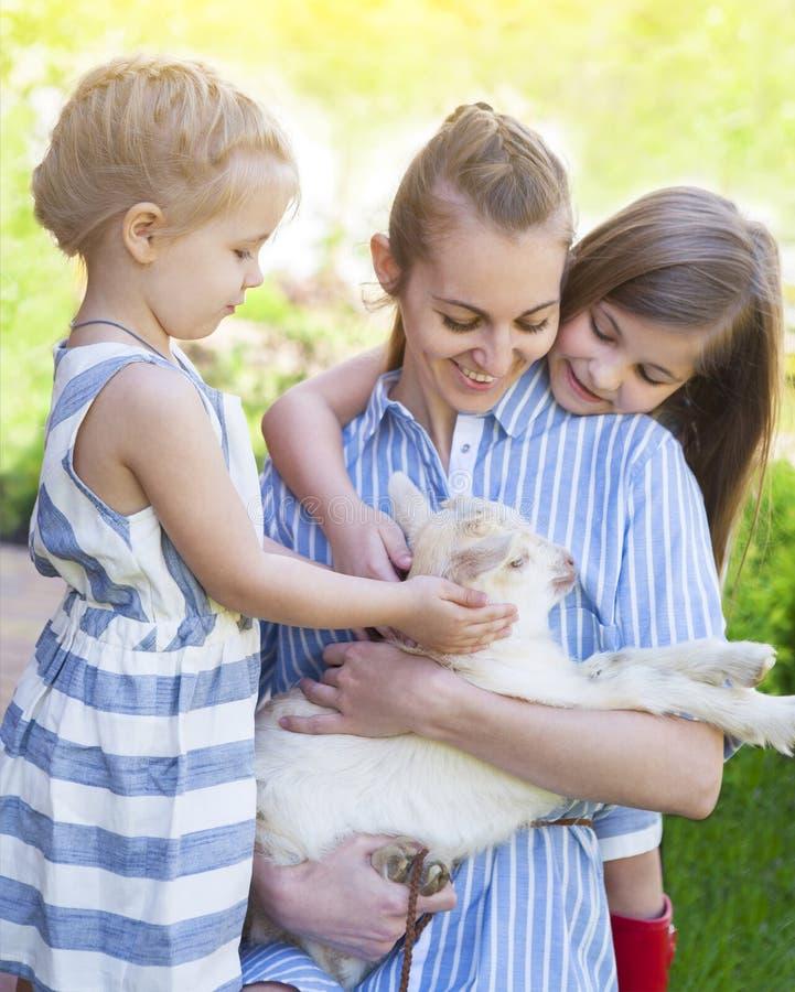 Mère heureuse et ses filles avec des chèvres de bébé image stock