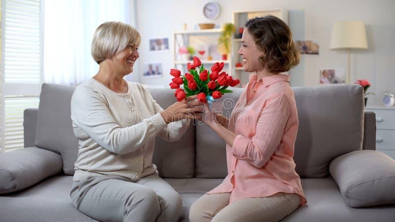Mère pluse âgé de soin présent le cadeau et les tulipes à la fille à l'anniversaire, amour image libre de droits