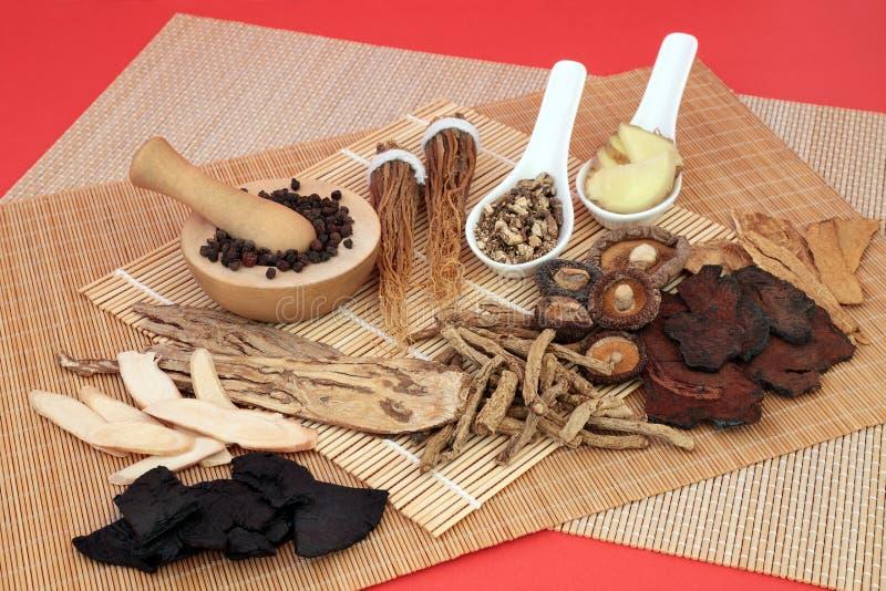 Médecine à base de plantes chinoises utilisée comme Tonic photos stock