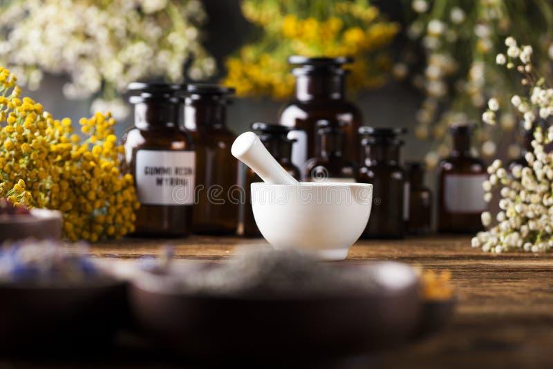 Médecine d'herbes, remède naturel et mortier sur le bureau en bois de vintage images libres de droits