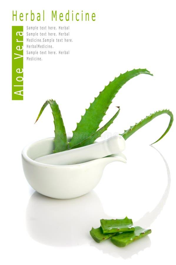 Médecine de fines herbes de vera d'aloès photographie stock libre de droits