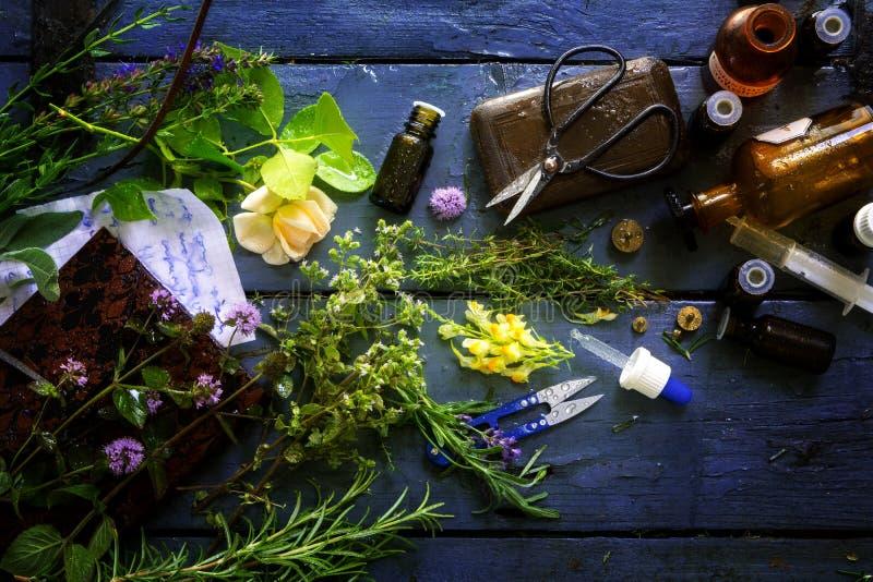 Médecine naturelle avec les herbes curatives et l'équipement comme bouteilles, Sc image libre de droits